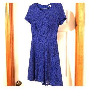 Lace Cobalt Blue Dress